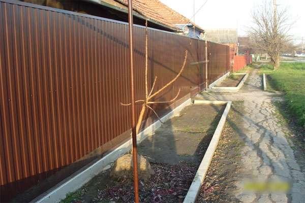 Фото: Забор из профнастила
